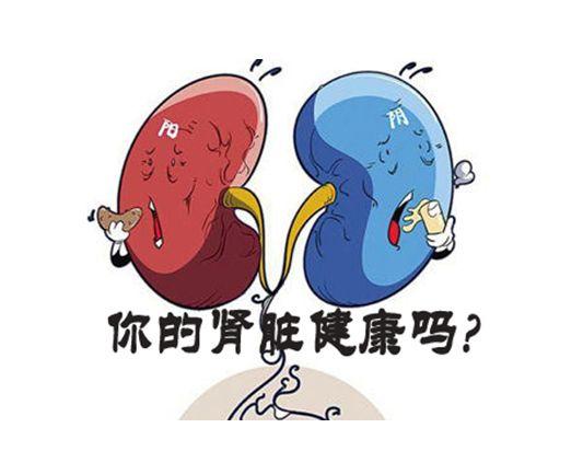 营养师学院:压力大会不会导致慢性肾炎?来看看专家是怎么说的