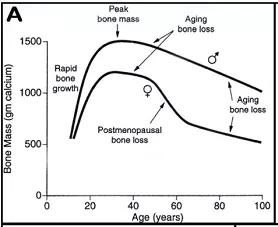 建议女性每天摄入1200mg钙来缓解「痛经」!