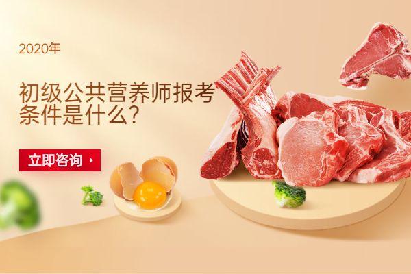 广州初级公共营养师报考条件是什么?